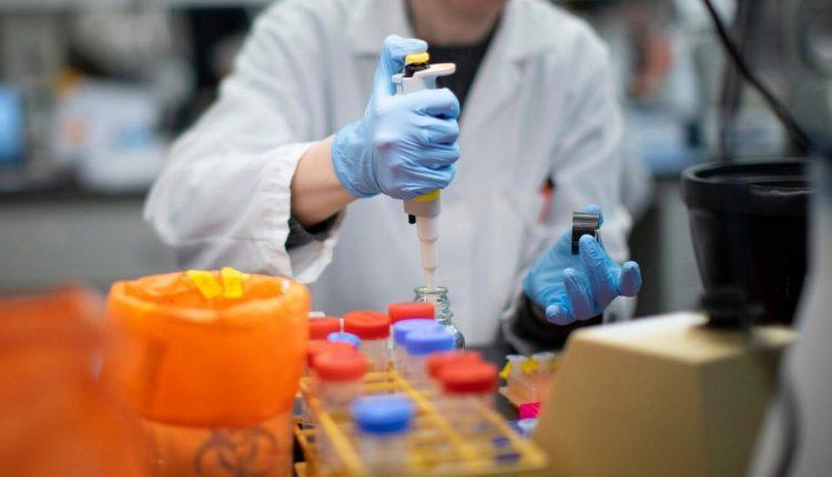 antibody to defeat coronavirus
