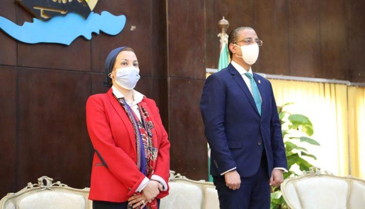 Egypt anaerobic gasification unit
